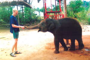 chang chutiman elephant trekking koh chang 1