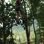 ko chang treetop adventure park 5