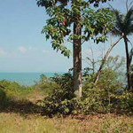1 rai beachfront land in koh chang 6