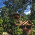 oasis bungalows on koh chang 3