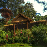 oasis bungalows on koh chang 5